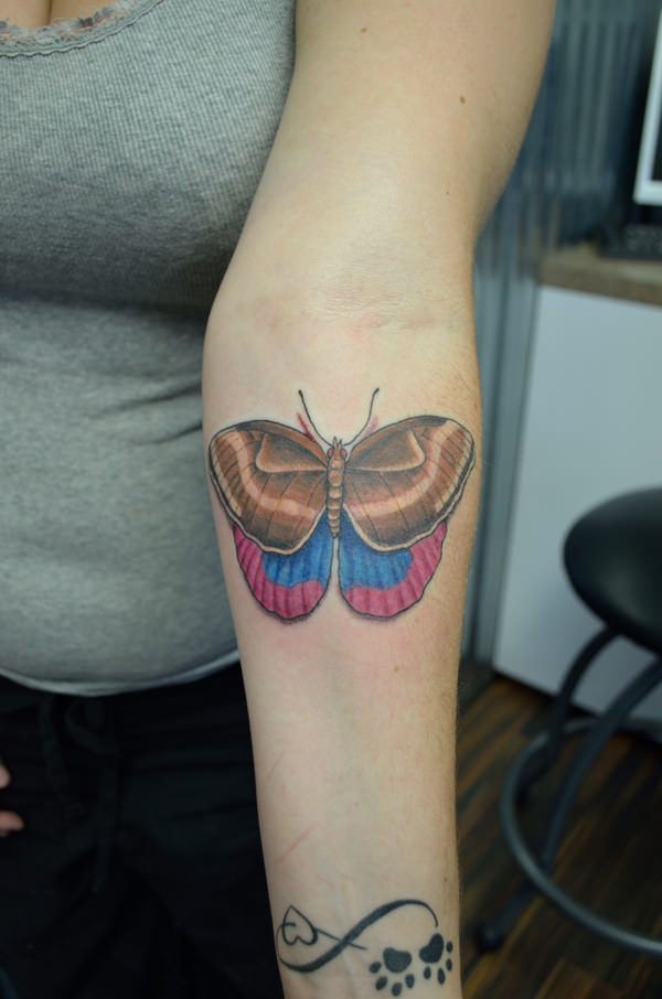 41240316-butterfly-tattoos